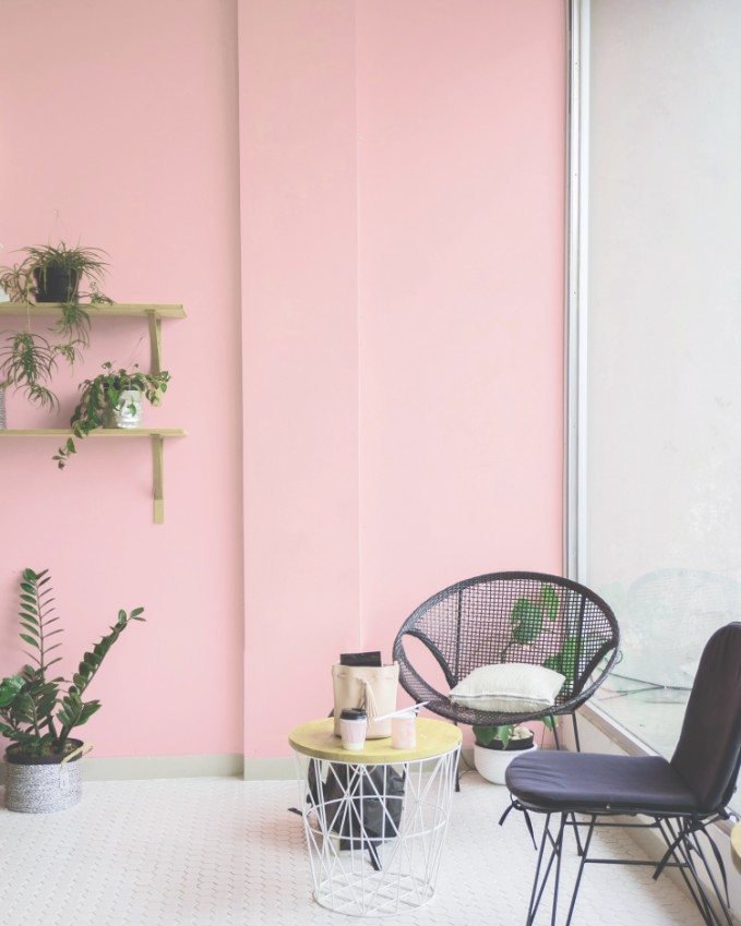millenial pink accent wall